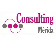 Consulting Mérida